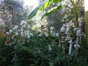 Jardin de fleurs de poterie2013