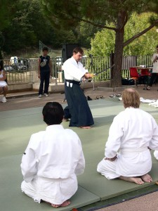 Aikido 2008