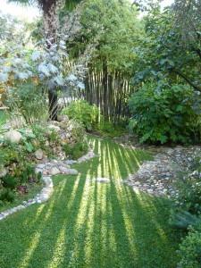 jardin fleurs de poterie 2010 (1)